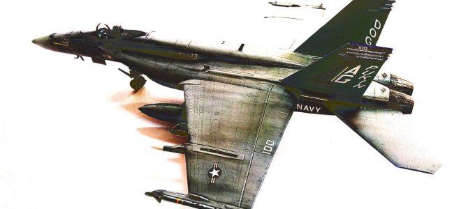 F/A-18E VFA-143 «Pukin Dogs»: 1/72: Academy: Сборка: Итоги